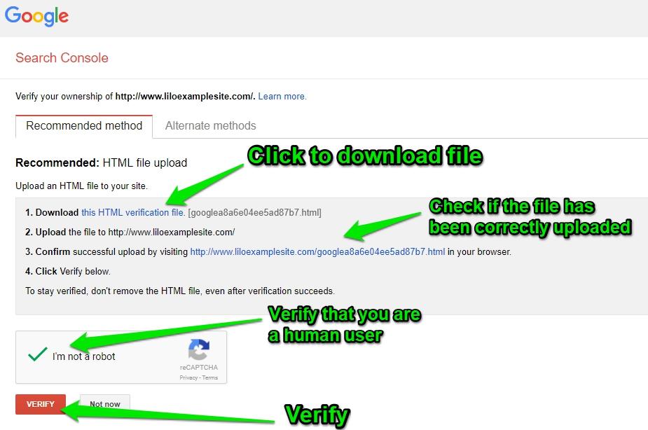 Google Search Console - Verification